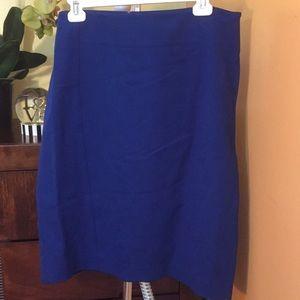 ANN TAYLOR. Skirt.